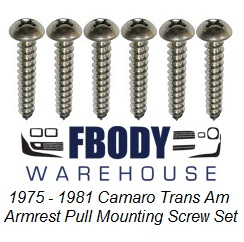 1975 - 1981 Camaro  Trans Am Door Panel Armrest Screws 6 Pc Set