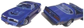 1970 - 1981 Trans Am Firebird Custom Premolded Pinstripes VARIOUS COLORS S/E Style for year specific!