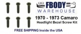 1970 - 1973 Camaro Headlight Bezel Screw Kit 6 pc