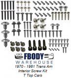 1970 - 1981 Trans Am Interior Screw Kit T Top Cars
