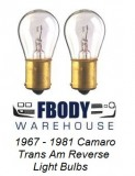 1967 - 1981 Camaro Trans Am Reverse Back Up Light Bulbs