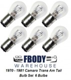 1967 - 1981 Trans Am Camaro Tail Light Bulb Set