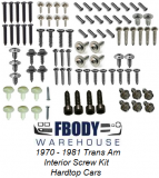 1970 - 1981 Trans Am Interior Screw Kit NEW Hard Top