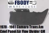 1970 - 1981 Camaro Trans Am Cowl Panel Air Divider Bar GM