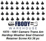 1970 - 1981 Camaro Trans Am Weather Seal Retainer Channel Mounting Screw Kit 36 pc