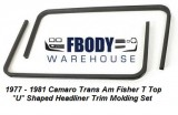 1978 - 1981 Camaro Trans Am Fisher U Shaped T-top Headliner Trim New Pair