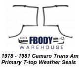 1978 - 1981 Camaro Trans Am Fisher T top Weather Seals Primary PAIR Muscle Car Industries