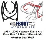1993 - 2002 Camaro Firebird Trans Am Front Door Hull Windshield Header Weatherseals PAIR