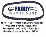 1977 - 1981 Trans Am Shaker Scoop Weather Seal *New* with Install Video!